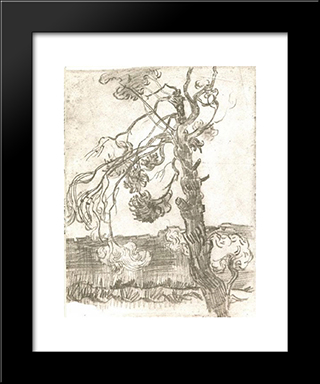 A Weather-Beaten Pine Tree: Modern Black Framed Art Print by Vincent van Gogh