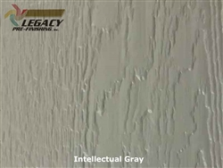 LP SmartSide Prefinished Panel Siding - Intellectual Gray