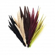 Pheasant Tails - Dyed 14-18""
