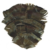 Natural Bronze Turkey Feather Flat Pad
