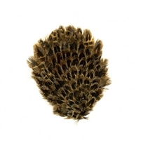 Natural Female Ringneck Pheasant Feather Pad