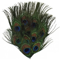 Natural Full Peacock Eye Feather Pad