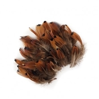 Loose Natural Pheasant Heart - #2932