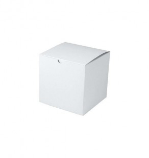 "6"" x 6"" x 6"" White Tuck It Boxes"