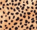 Short Pile Cheetah Print Craft Fur