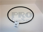Drive Belt for American 8 and Floorcrafter