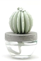 Gypsum Cactus Fragrance Diffuser-Ocean Breeze
