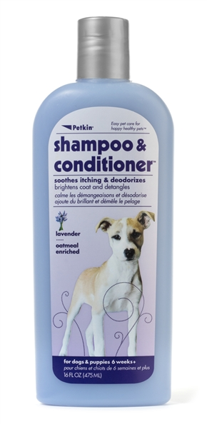2-in-1 Shampoo & Conditioner - Lavender 16oz