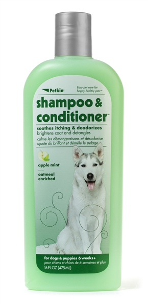 2-in-1 Shampoo & Conditioner - Apple Mint 16oz