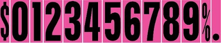 Windshield Numbers - 9 1/2 inch Black & Hot Pink