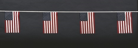 American Pennants - Poly