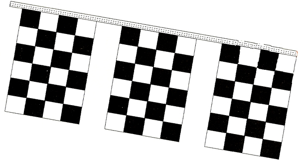 Checkered Racing Flags 60 Ft String
