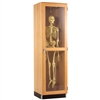 "Diversified Woodcrafts Hanging Skeleton Storage Cabinet - 24"" W x 22"" D (Diversified Woodcrafts DIV-375-2422K)"