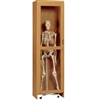 "Diversified Woodcrafts Roll-In Skeleton Storage Cabinet - 24"" W x 22"" D (Diversified Woodcrafts DIV-377-2422K)"