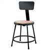 "NPS 18""H Black Heavy-Duty Steel Stool with Backrest (National Public Seating NPS-6218B-10)"