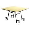 "NPS MTSSF Series 48"" Square Easyfold Mobile Table (National Public Seating NPS-MTSSF-48Q)"