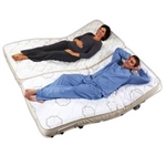 Transfer Master Hi-Low Adjustable Bed