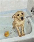 Bathtime Blues Open Edition Print
