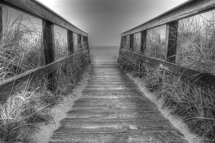 Cape Cod (black and White). A gallery wrapped canvas by Kelly Wade
