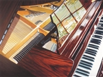 Piano Limited Edition Gallery Wrapped Canvas 15x30