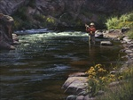 Fly Fishing on the South Platte