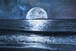 Moon and Ocean landscape canvas