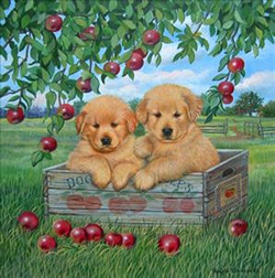 Apple Pups