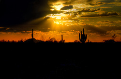 A desert sunset. A gallery wrapped canvas by Kelly Wade