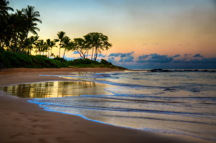 Keawakapu Beach Maui Sunrise Hawaiian Islands. A gallery wrapped canvas by Kelly Wade