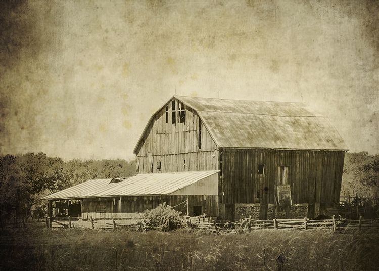Old Farm, Old Barn Sepia Canvas by Hal Halli