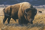 Herd Bull BY DES McCAFFREY  19x28.5 Ltd. Edition Paper Giclee