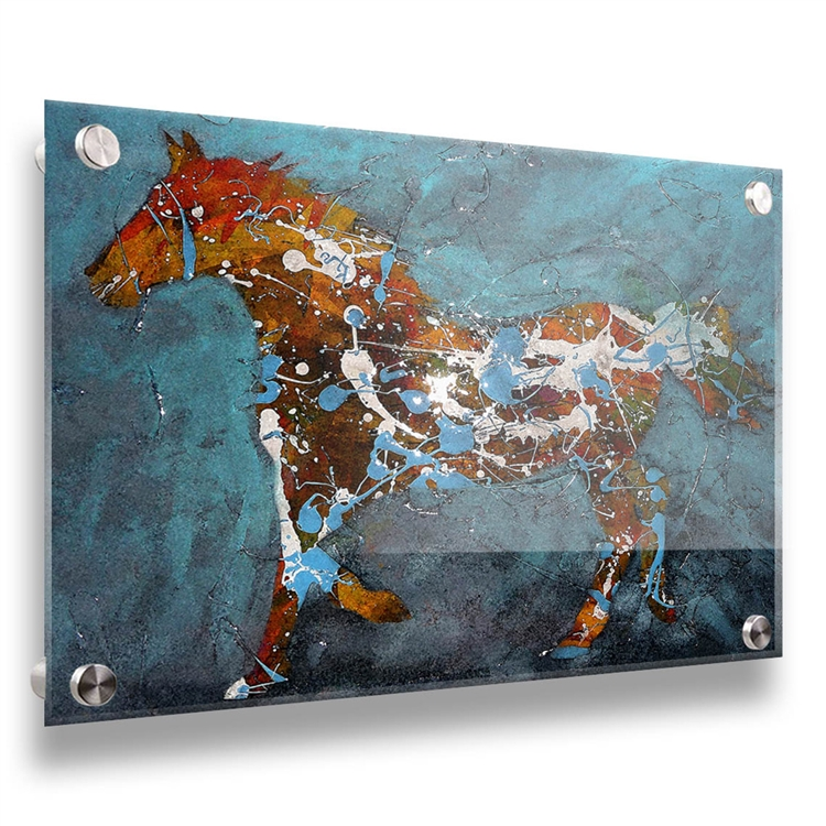 Speckled Pony 24x32 contemporary horse image on acrylic