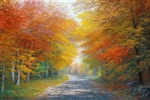 Autumn Glow 24x36 original oil painting on canvas