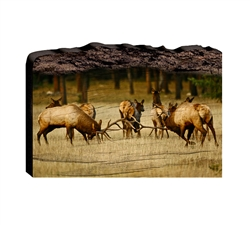 Who will be King Elk fight - Faux Split Log wood decor