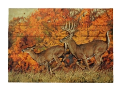 Rolling Right Along by Ryan Kirby, Decorative Wood wall plaque