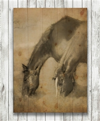 Love is Symmetry Horses in Sepia Wood Pallet by Hal Halli