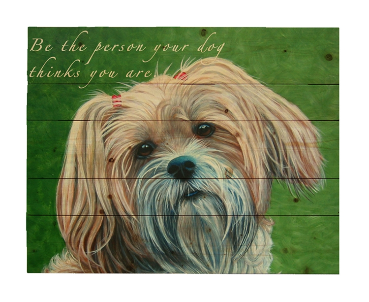 Adorable by Patricia bourque This 16x20 image is printed on a wood plaque.