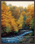 AUTUMN STREAM - featuring Psalm 1:3