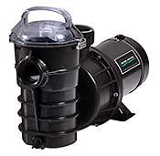 Pentair 340104 Dynamo Pool Pump