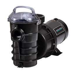 Pentair 340106 Dynamo Pool Pump