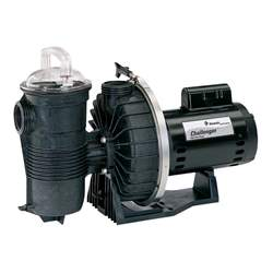 Pentair 345213 Challenger Pool Pump
