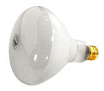 Pentair Amerilite Pool Light Bulb 500 Watt - 120V