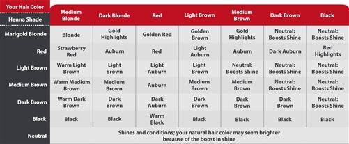 Morrocco Method All Natural Henna Hair Dye Black Organic