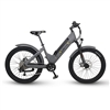 VILLAGER URBAN E-BIKE 2020 - Quiet Kat