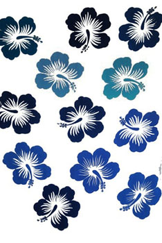 Twelve Hibiscus White with Black and Blue Flowers