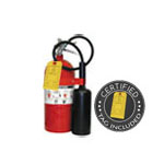 10 lb CO2 Dry Chemical Fire Extinguisher