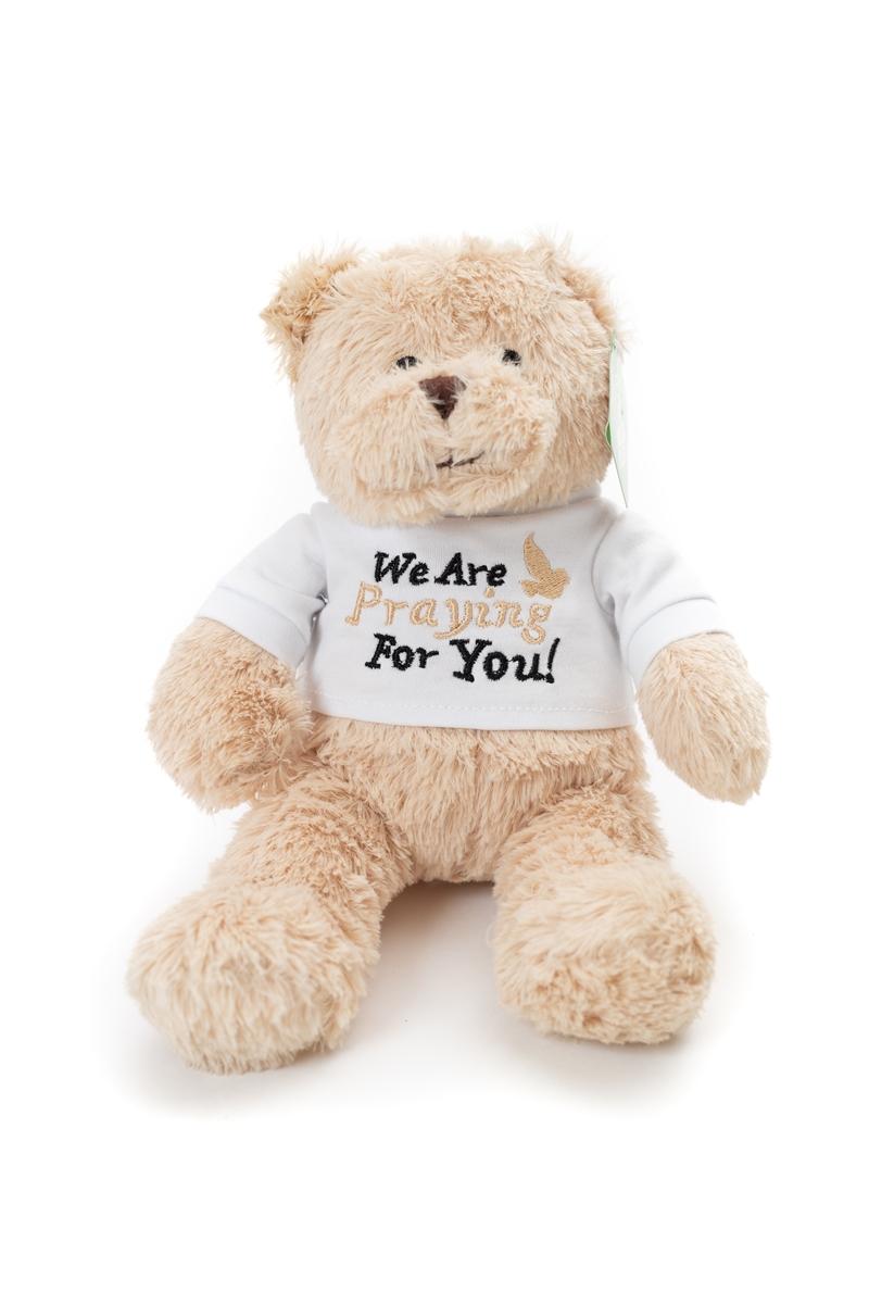 Praying For You Plush Bear Sunshine Corner Gift Shop Wayne Unc
