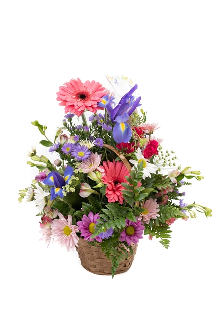 Seasonal Fresh Cut Flower Arrangement