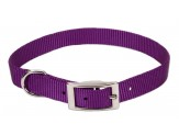 Coastal Single-Ply Nylon Collar Purple 3/8X10in