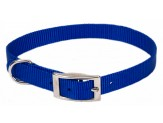 Coastal Single-Ply Nylon DogCollar Blue 3/8X12in